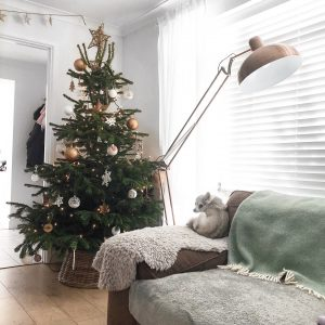 how to save money this christmas - roseyhome - money, budget, christmas, family, home